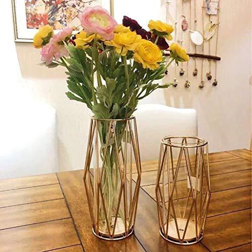 - Karooch Nordic Metal Frame Flower Vase with Transparent Glass Plant Holder Gold Rose Hydroponics Container Ornaments for Living Room Bedroom Decorations (A)