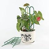 (Updated) DIY Garden Plant Climbing Trellis,Potted
