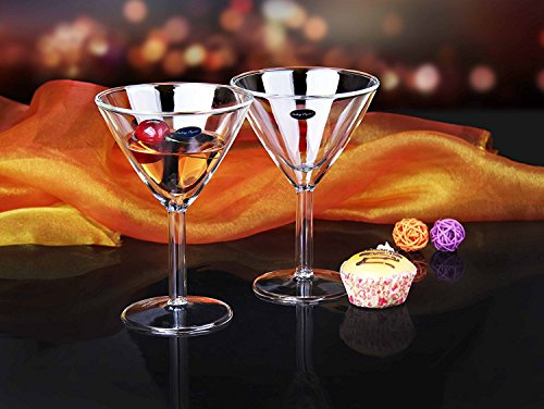 Double Wall Martini Glass - 6