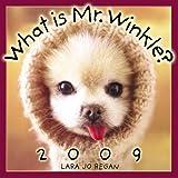 What is Mr. Winkle? 2009