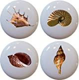 Seashell Ceramic Cabinet Drawer Pull Knobs Set of 4