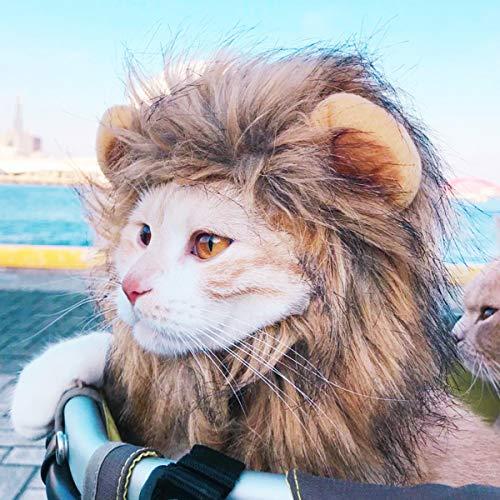 Ginfonr Lion Mane Costume for Cat &