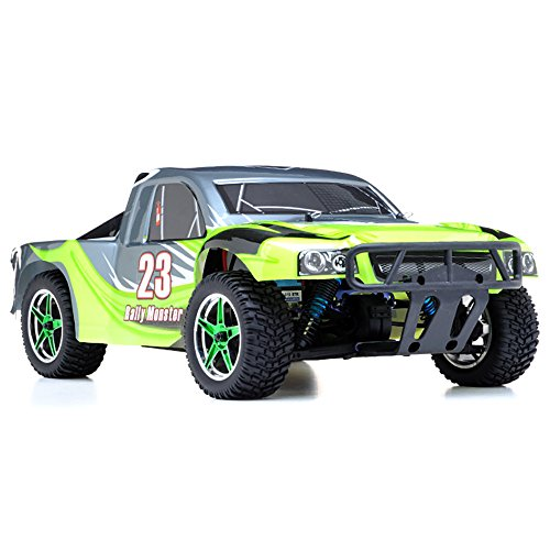 1/10th 2.4Ghz Brushless Exceed RC Rally Monster Electric ...