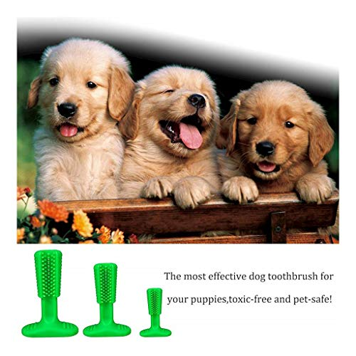 Viet's Dog Toothbrush Finger - Dog Brushing Stick, Toothbrush Soft Rubber Brush Dogs, Pets Oral Care, Doggy Tooth Cleaning - Medium Size (25-40lbs Dogs) - Dog ()