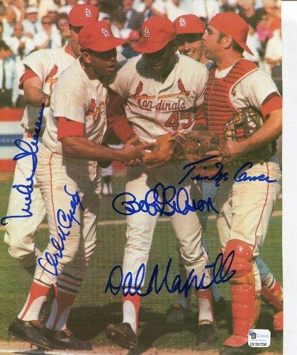 (* ST. LOUIS CARDINALS * 1967 World Series team signed 8x10 photo)