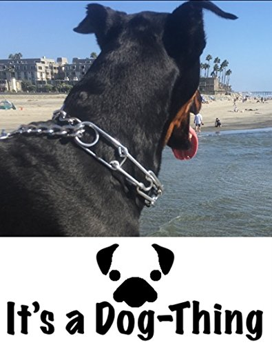 Dog-Thing-Its-a-Dog-Training-Prong-Collar-Metal-Collar-for-Large-Dog-Obedience-Training-Better-Than-a-Choke-Chain-or-Other-Dog-Collars-to-Stop-Pulling-During-Dog-Walking