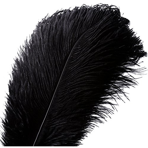 - 10pcs Natural Ostrich Feather Craft 16-18inch(40-45cm) Plume for Wedding Centerpieces Home Decoration (16-18inch,Black)