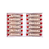 Easyinsmile Dental Synthetic Resin Teeth Acrylic