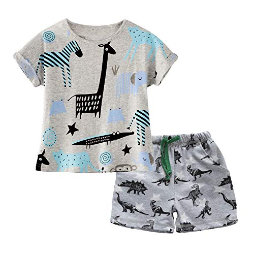 BIBNice Toddler Boys Clothes Short Sleeve Shirts Sets Cotton Cute Animal 3t -