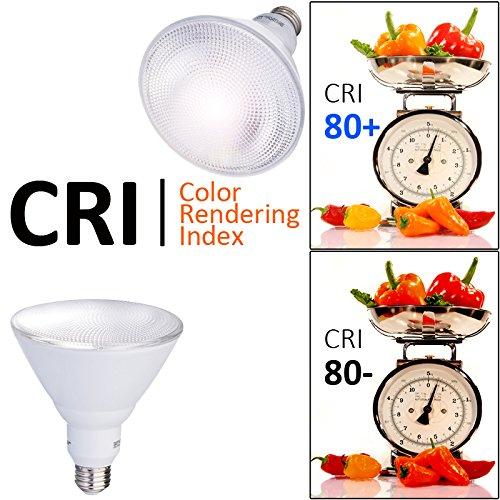 AmeriLuck 5000K Daylight Outdoor PAR38 LED Flood Light Bulb, 90W Equiv. 13W Non-Dimmable (2 Pack)