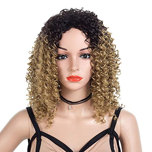 Best Middle Part Wig Ombre Honey Blonde for Women or Girls Cosplay Daily Party Cheap Heat Resistant Synthetic Full Wigs Deep Kinky Curly Real Fiber Wig (Not Human Hair) Half Hand Tied Free Wigs Cap