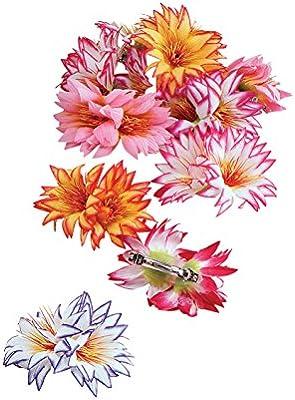 Bristol Novelties - Disfraz de Flor Adultos (BA396): Amazon.es ...