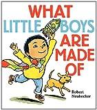 What Little Boys Are Made Of, Robert Neubecker, 0062023551