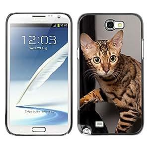 Vortex Accessory Carcasa Protectora Para SAMSUNG GALAXY NOTE 2 N7100 - Ocicat Shorthair Bengal Savannah Cat -