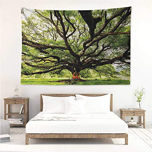 alisos Nature,Wall Art Tapestry The Largest Monkey Pod Tree in Thailand Eastern Green Big Branches Growth Eco Photo 60W x 51L inch Home Decor Wall Hanging Green Brown