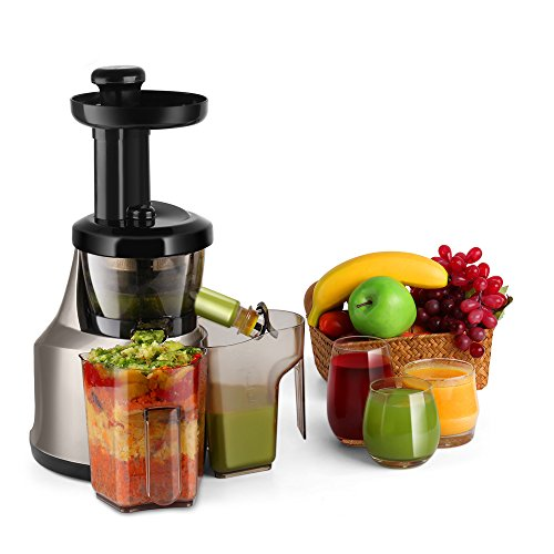 Flexzion Cold Press Juicer Machine - Masticating Juicer Slow Juice Extractor Maker Electric Juicing Vertical Stand for Fruit, Vegetable, Greens, Wheat Grass & More with Big Cup & Juicing Bowl (Machine Juice Business compare prices)