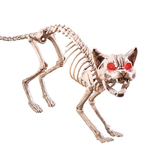 Collections Etc Scary Sound-Activated Skeleton Cat Halloween Decoration ()