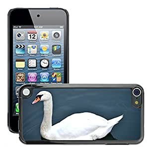 Super Stella Slim PC Hard Case Cover Skin Armor Shell Protection // M00107568 Swan Swan In The Water Water Bird // Apple ipod Touch 5 5G 5th