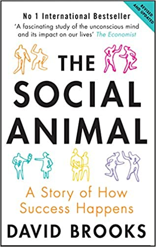 image for Social Animal: A Story of How Success Happens