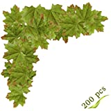 Artificial Maple Leaves, MerryNine Autumn Fall Leaves Bulk Assorted Multicolor Mixed Garland Wedding House Decorations (Maple Leaves-200pcs, Green)