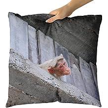 Westlake Art Decorative Throw Pillow - Mysore Zoo - Photography Home Decor Living Room - 18x18in (x8r-131-c39)