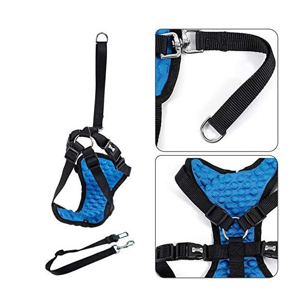 Dog Safety Vest Car Harness Seatbelt Set Adjustable Safety Mesh Harness Travel Strap Vest with Adjustable Seat Belt… Click on image for further info. 3