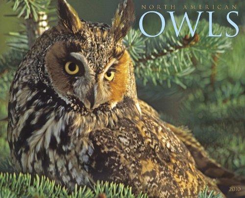 North American Owls 2010 Calendar