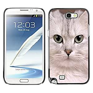 VORTEX ACCESSORY Hard Protective Case Skin Cover - white singapura kitten Devon cat - Samsung Galaxy Note 2 N7100