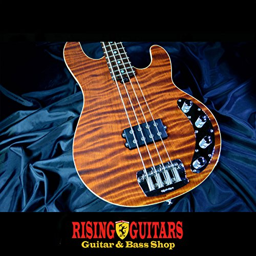 MUSIC MAN Stingray BFR-Redwood