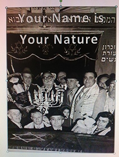 Your Name is Your Nature: based on Bible/Torah numerology and code by [Langner, David]