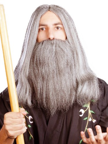 Enigma Wigs Men's Wizard, Mixed Grey, One Size -