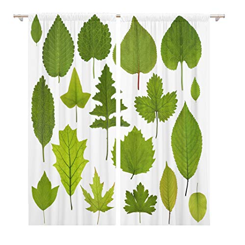 Tinmun 104 x 84 Inch Decorative Drapes Orange Linden Collection of Garden Green Leaves Leaf Red 2 Panels Window Curtains for Living Room Bedroom Printed