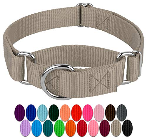 (Country Brook Petz | Martingale Heavyduty Nylon Dog Collar - Silver - Small)