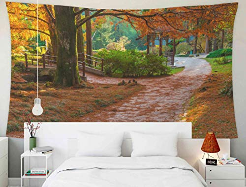 Cypress Garden Bridge - EMMTEEY Large Wall Hanging Tapestry, Tapestries Décor Living Room Bedroom for Home Inhouse by Printed 80x60 Inches for in The Japanese Garden with Bridge and Arbor Arboretum Sunny Autumn Day Sochi