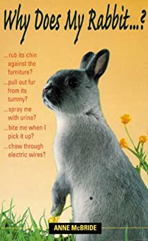 Why Does My Rabbit . . . ? (Why Does My . . . ? series) by [McBride, Anne]