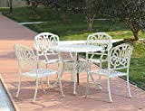 Domi Outdoor Living 5-Piece Clairne Cast Aluminum Outdoor Dining Set With Round Table and Arm Chair,Beige Finish Review