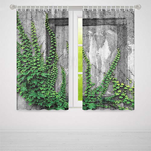 YOLIYANA Mystic House Decor Bedroom Blackout Curtains,Ivy on Wall with Aged Antique Empty Picture Frame as Window Creative Art,Living Room Bedroom Décor, 2 Panel Set,66W X 65L -