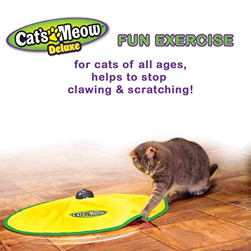 Cat's Meow- Motorized Wand Cat Toy, Automatic 30 Minute Shut Off, 3 Speed Settings, The Toy Your Cat Can't Resist 5