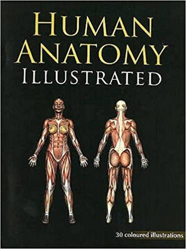 Buy Human Anatomy Illustrated 1 Book Online At Low Prices In India