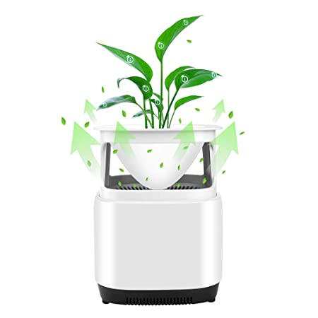 Pollen for Dust Odors Creative Design Air Cleaner with Plant and Physical Purification Bacteria Pets Dander Mold GEARGO High Efficiency Particulate Air Filter Allergies Smoke Air Purifier