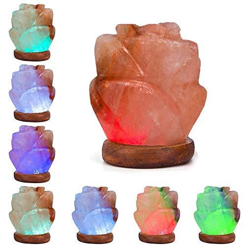 Niubity Himalayan Pink Natural Salt Lamp,USB Light Wooden Base Himalayan Crystal Rock Salt Lamp Air Purifier Night Light (Rose) by Niubity