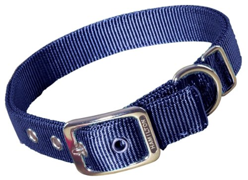 Hamilton Double Thick Nylon Deluxe Dog Collar, 1-Inch by 18-Inch, Navy Blue