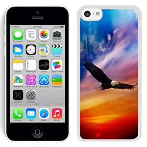 Beautiful Designed Antiskid Cover Case For iPhone 5C Phone Case With Flying Eagle Dramatic Sky_White Phone Case