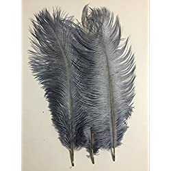 "KOLIGHT20pcs Ostrich Feather Gray 12""-14"" Natural Feathers Wedding, Party ,Home ,Hairs Decoration"