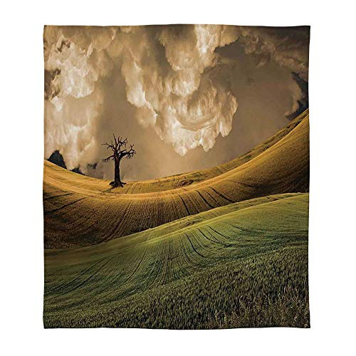 YOLIYANA Warm Flannel Blanket,Nature,for Folding Bed Crib, Stroller, Travel, Couch and Bed,Size Throw/Twin/Queen/King,Serene Landscape with Dramatic Sky and Single ()