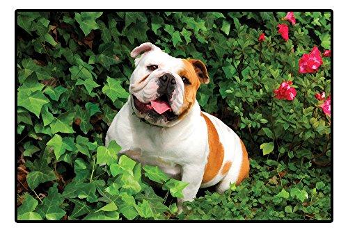 Designer Bulldog Fußmatte Indoor- und Outdoor Matte Türmatte 68cm x 46cm Hund