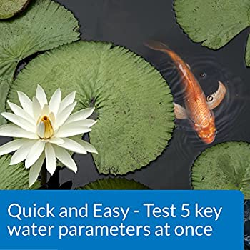 Api Pond 5 In 1 Pond Test Strips Pond Water Test Strips 25-count 3