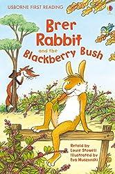 Brer Rabbit and the Blackberry Bush: Usborne First Reading