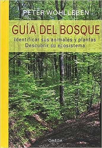 GUIA DEL BOSQUE: Identificar los animales y plantas. Descubrir su ecosistema. GUIAS DEL NATURALISTA: Amazon.es: WOHLLEBEN, PETER, NIETO SILVA, EVA: Libros