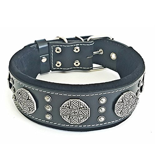 Bestia Maximus genuine leather dog collar, Large breeds, cane corso, Rottweiler, Boxer, Bullmastiff, Dogo, Quality dog collar, 100% leather, studded, M- XXL size, 2.5 inch wide. padded. Made in - American Collar Leather